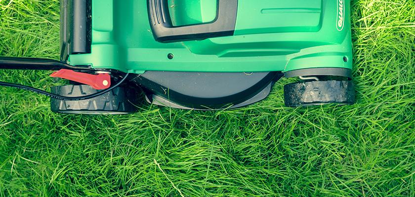 Gazon met grasmaaier